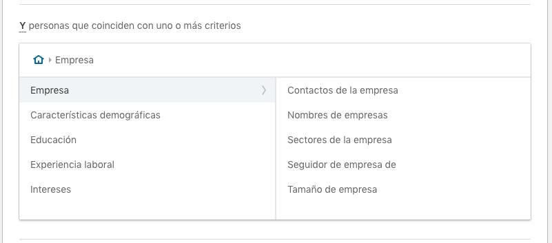 Atributos empresa segmentación Linkedin