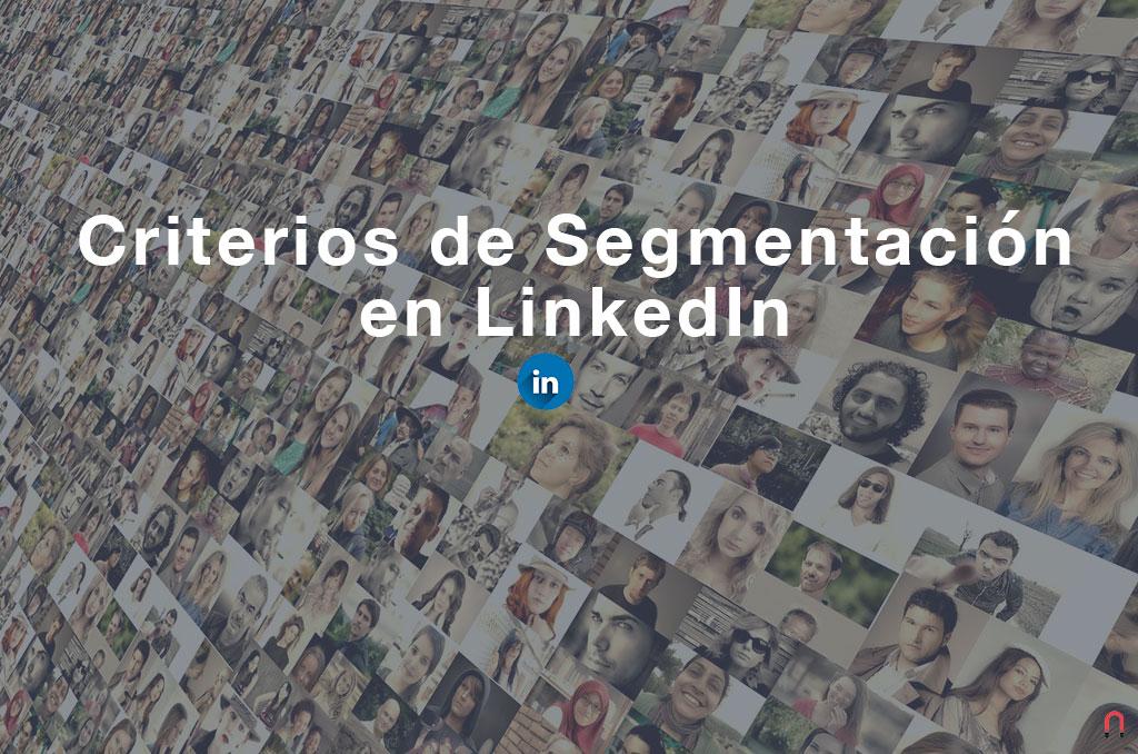 Criterios de Segmentación en LinkedIn