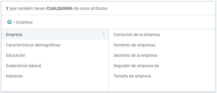 Opciones de segmentacion relacionadas con la empresa en LinkedIn