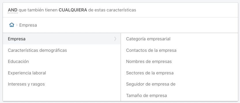 Opciones de segmentacion por empresa en LinkedIn